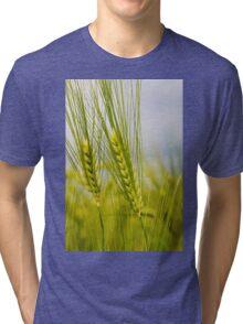 Wheat Tri-blend T-Shirt