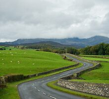 Country Road, Lake District, England by TeaCee