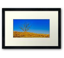 The Dry Country Framed Print