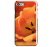 Close Up Flower iPhone Case/Skin