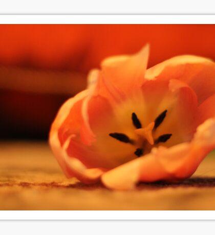 Close Up Flower Sticker