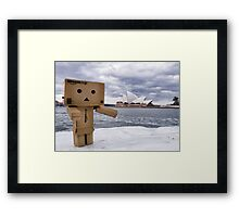 Typical Tourist Framed Print