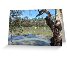 Over the Lagoon Greeting Card