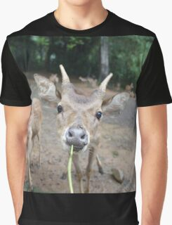 Cute Deer - Eating Vegetables Graphic T-Shirt