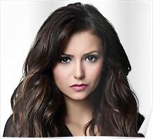 Beautiful Nina Dobrev 2 Poster