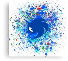 Sonic X Canvas Print