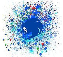 Sonic X Photographic Print