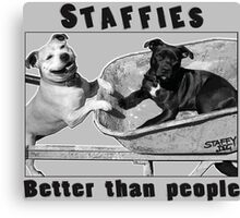 Staffies Better than people Canvas Print