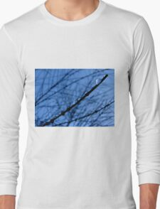 blue rain T-Shirt