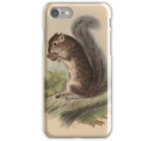 The zoology of Captain Beechey's voyage - Sciurus colliei iPhone Case/Skin