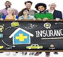 Insurance Sector: Outsourcing of Business Activities, Functions and Processes by Cogneesol Pvt. Ltd.