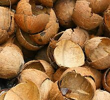 Pile of Coconut Shells by rhamm