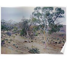 Dry creek bed, Flinders Ranges Poster