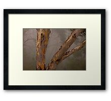 Grace - Blackheath NSW  The HDR Experience Framed Print