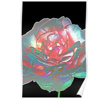 Rose petals - abstract Poster