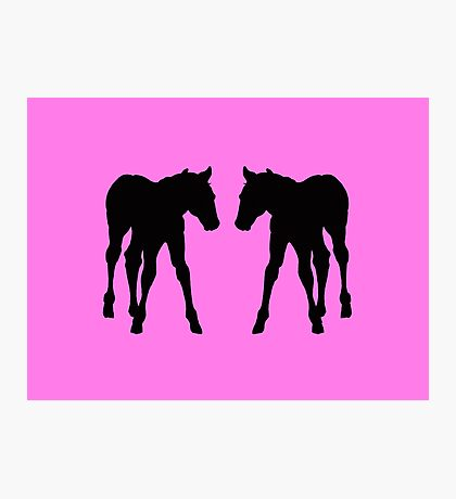 Foal, Colt, Baby Horses Silhouette on Pink Photographic Print