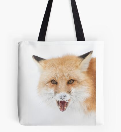 Red Fox snow face  - Algonquin Park Tote Bag