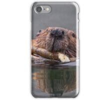 Beaver and Reflection iPhone Case/Skin