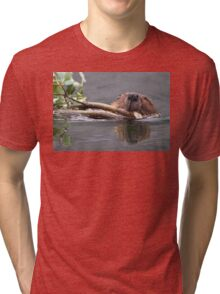 Beaver and Reflection Tri-blend T-Shirt