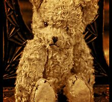 Abandoned Ted by Shelly Still