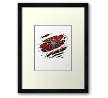 Spiderman Chest Ripped Framed Print