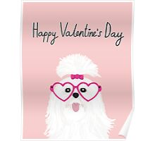 shih tzu small white fluffy puppy valentines day gift for dog person  Poster