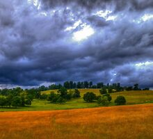 Nene Valley Near Fawsley by SimplyScene