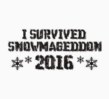 I Survived Snowmageddon by vectorgalaxy