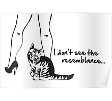 Pussy Cat Resemblance Poster