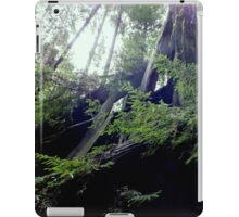 Into the sky iPad Case/Skin