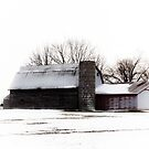 ANOTHER BARN IN JANUARY by Pauline Evans