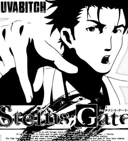 Steins;Gate SONUVABITCH! Sticker