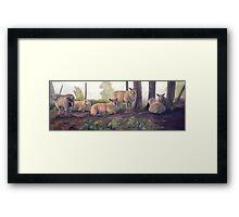 Relaxed sheep Framed Print