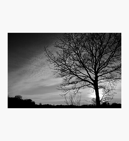 Norfolk Silhouette Photographic Print