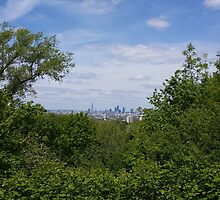 London City through the trees by LuleaUrbaNature