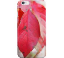 Red leaves iPhone Case/Skin
