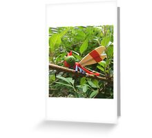 A Wild Yanma Appears! Greeting Card