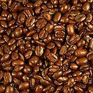 Coffee Beans by Elizabeth  Lilja