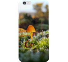 Dew and Moss  iPhone Case/Skin