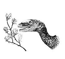 Sinornithosaurus and magnolia Photographic Print