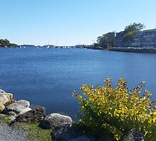 Mahone bay by KathleenLesser