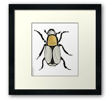 Bug insect Framed Print