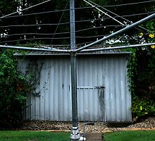 Truly Australian Cliche -Tin Shed - Hills Hoist And Kookaburra by Noel Elliot