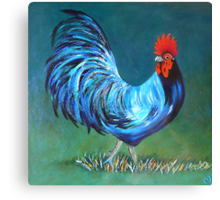The Magic Rooster Canvas Print