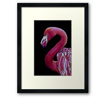 Pink Flamingo in Coloured Pencil Framed Print