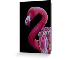 Pink Flamingo in Coloured Pencil Greeting Card