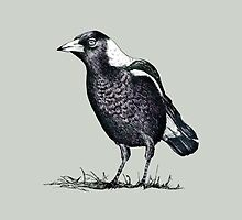 Magpie - Dedicated to family by AirDrawn