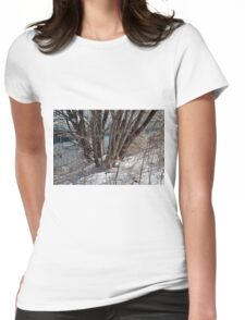 Winter by the pond Womens Fitted T-Shirt