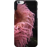 Pink Aquarium iPhone Case/Skin