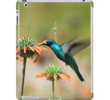 Hummingbird Collecting Nectar iPad Case/Skin